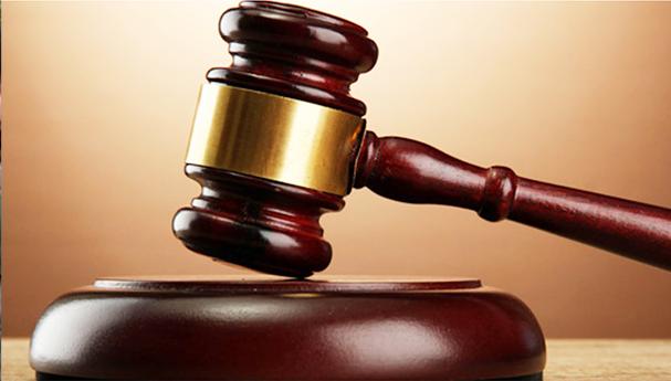 السجن 5 أعوام لمتهمين بتزوير محررات رسمية في الإسكندرية