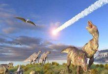 صورة العثور بالمغرب على بقايا ديناصور عاش قبل 66 مليون سنة من فصيلة منقار البط