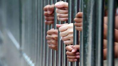 صورة تناول جرعة مخدرة زائدة.. حبس 4 متهمين بالتخلص من جثة صديقهم بالإسكندرية