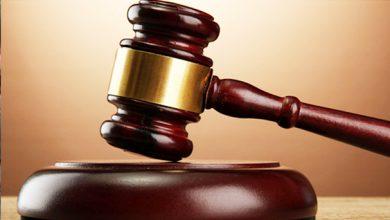 تأجيل محاكمة الدكش إمبراطور المخدرات والسلاح بالقليوبية لـ10 يناير