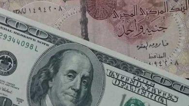 صورة سعر الجنيه المصري مقابل العملات الأجنبية في مصر اليوم الأحد 17 يناير/كانون الثاني 2021