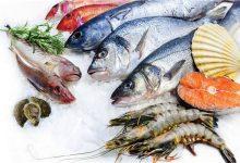 صورة أسعار الأسماك في سوق العبور اليوم 17يناير