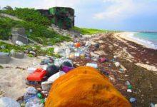 صورة البِحار والصحة البيئية في العالم العربي… تلوث متعدد المظاهر ودراسات محدودة