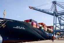 تصدير حاصلات زراعية من ميناء دمياط إلى أمريكا و14 دولة أخرى