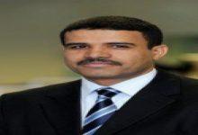 صورة دم اليمن مسفوك وأنتم تستفتون عن دم البعوضة!