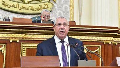صورة 90 مليار جنيه استثمارات الثروة الداجنة.. أبرز تصريحات وزير الزراعة أمام مجلس النواب