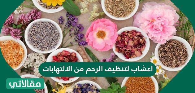 اعشاب لتنظيف الرحم من الالتهابات سواح برس