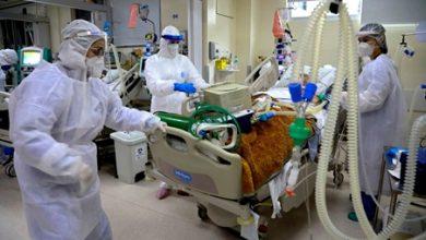 صورة البرازيل تسجل 65169 إصابة و1337 وفاة بفيروس كورونا