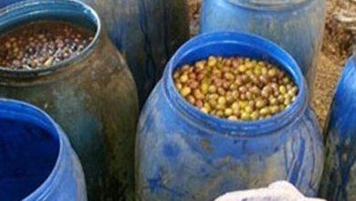 صورة التحفظ على 5 أطنان ملح طعام ومخللات فاسدة في الإسكندرية
