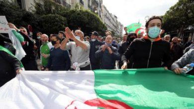 صورة حراك الجزائر يعود مطالباً بـ«دولة مدنية»