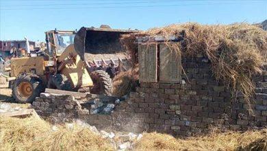 صورة إزالة حالة تعدِ على أراضي زراعية.. وفك شدة خشبية لبناء عقار مخالف بكفر الشيخ