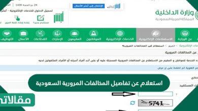 صورة استعلام عن تفاصيل المخالفات المرورية السعودية