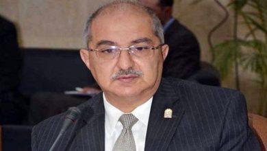 رئيس جامعة أسيوط يتفقد القمح المزروع  بـ 32 فدانا بمزرعة الإرشادية