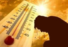 الأرصاد: نهاية الموجة شديدة الحرارة مساء اليوم.. ونشاط الرياح غدا غير مصحوب بأتربة