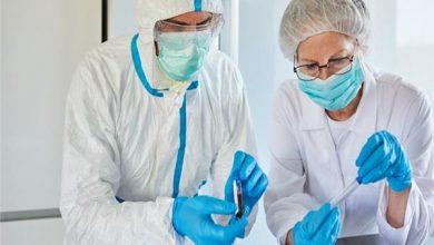 نسب شفاء مرضى كورونا في مستشفيات العزل
