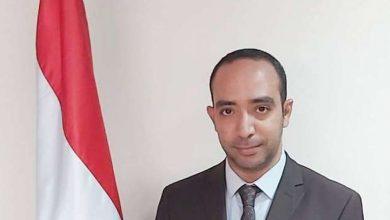 المهندس محمد غانم، المتحدث باسم وزارة الموارد المائية والري