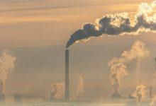 صورة نمسوي يقيم دعوى على حكومته لفشلها في حماية المناخ