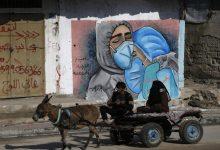 صورة وزارة الصحة تكشف حصيلة الاصابات اليومية بفيروس كورونا في قطاع غزة