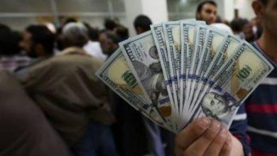 """""""المنحة القطرية"""" رابط فحص المنحة القطرية 100 دولار شهر 5 2021- موقع الاستعلام الحكومي المركزي query.gov.ps ."""