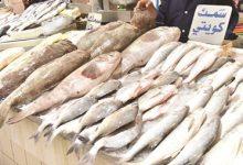 بالفيديو الأسماك مع العيد إقبال كبير مع قلة المعروض وارتفاع جنوني بالأسعار