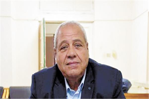 د. جمال عبدالحى