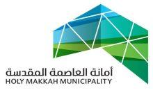 أمانة العاصمة المقدسة لـ عكاظ: 100م مساحة تموينات التبغ والشيشة - أخبار السعودية