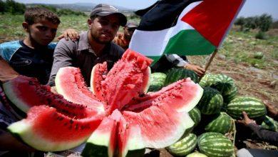 رمزية البطيخ في المقاومة ضد الاحتلال عند الفلسطينيين