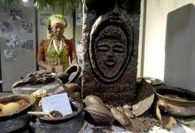 كهرباء بطعم الشيكولاتة.. مبادرة لإنارة منازل ساحل العاج بالطاقة المتجددة من ثمار الكاكاو