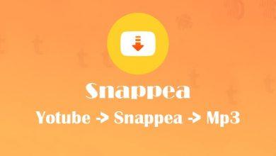 كيفية التنزيل من اليوتيوب وتحويل الفيديو إلى mp3 مع الأداة الأشهر في العالم snappea