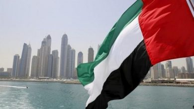 مجلس الأمن: انتخاب دولة الإمارات لشغل مقعد غير دائم