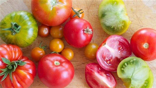 وزارة الزراعة تكشف حقيقة فيديو إلقاء محصول الطماطم بالمصارف| والفلاحين تطالب بمحاسبة المذنبين