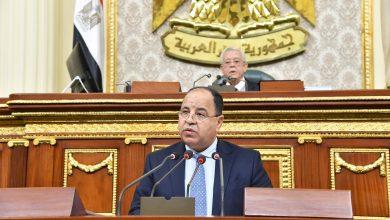 وزير المالية لـ«النواب»: المنظمات الدولية اشادت بالإصلاح الاقتصادي لمصر