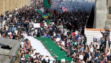 Cezayir: Aktivistin tutuklanması sonrası yargı boykotta