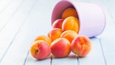 الفواكه في حمية الصيف  