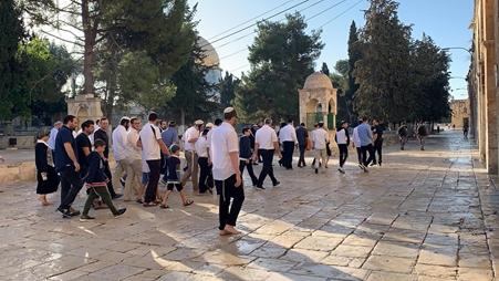 عشرات المستوطنين يقتحمون المسجد الأقصى بحماية الشرطة