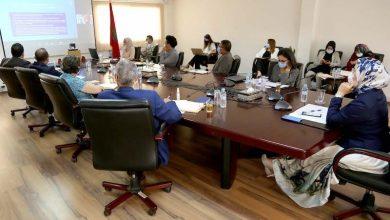 وزارة الجالية تعزز مشاركة مغاربة العالم في النموذج التنموي الجديد