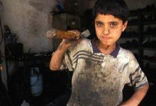 التضامن: الفقر والتسرب من التعليم والتفكك الأسري والزيادة السكانية أهم أسباب عمالة الأطفال
