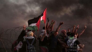 الصحة بغزة: تعاملنا مع المسيرة السلمية وفق خطة ميدانية متكاملة
