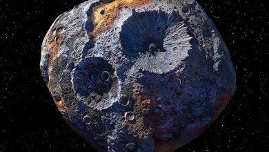 كويكب منجم الذهب يقترب من الأرض