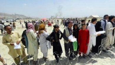 مترجمان نیروهای آمریکایی و ناتو در تیررس طالبان