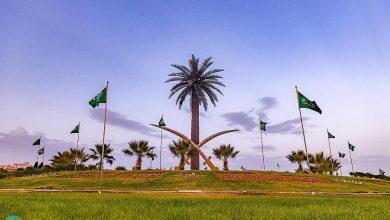 الباحة تتوشح بأعلام الوطن احتفالاً باليوم الوطني الـ 91 للمملكة #الباحة