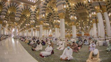 «الحج والعمرة»: أداء الصلاة في المسجد النبوي دون تصريح - أخبار السعودية
