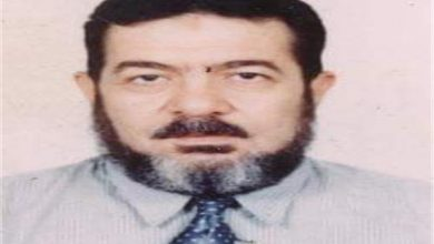 المهندس محمد الحنفي مدير عام الغرفة