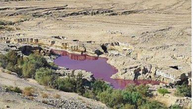 بيان حكومي حول البركة الملونة في البحر الميت
