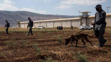 تقديرات إسرائيلية: استشهاد الأسرى الستة في اشتباك مسلح سيؤدي إلى تصعيد مع غزة