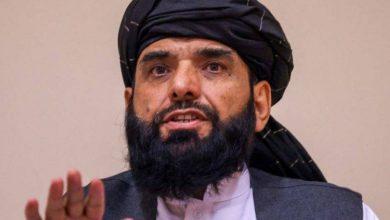 «طالبان» ترجح إجراء انتخابات - أخبار السعودية