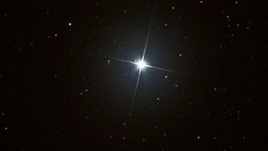 «فلكية جدة»: «فم الحوت».. نجم الخريف يتلألأ في سماء الليل - أخبار السعودية