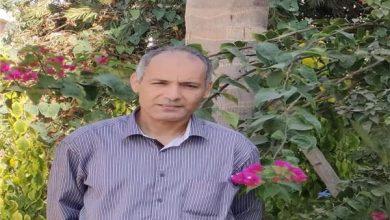 دكتور محمد السيد