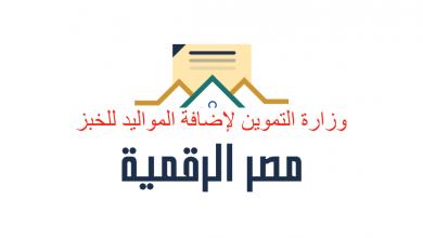 لينك وزارة التموين لإضافة المواليد للخبز الخطوات اللازمة لتسجيل المواليد على بطاقات التموين عبر بوابة مصر الرقمية