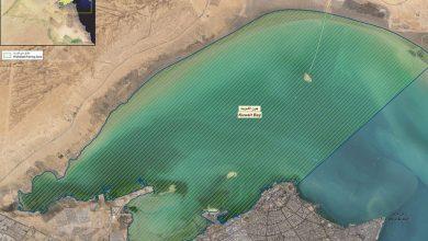 الحكومة: «جون الكويت» ملوَّث كيميائياً وبكتيرياً